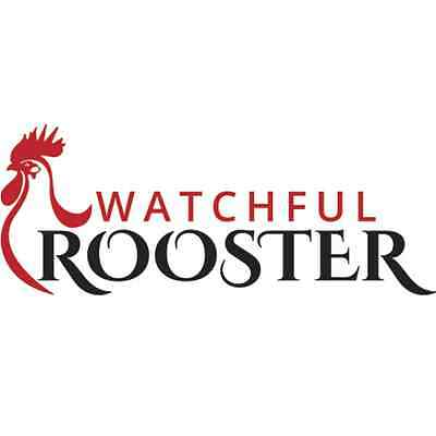 Watchful Rooster