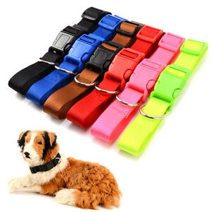 Nylon-Hundehalsband-Hundewelpen-Hunde-Halsband-Halsung-Nylonhalsband-Halsbaender