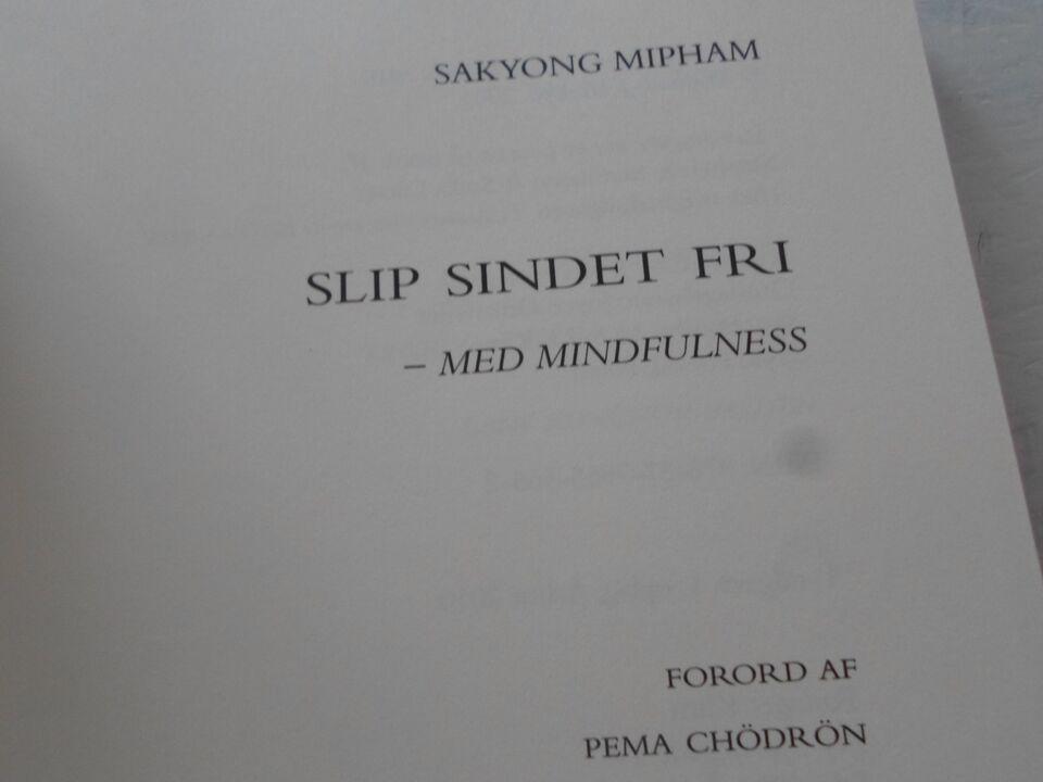 Slip sindet fri med MINDFULLNESS, Sakyong Mipham, emne: