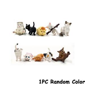 Farm Simulation Mini Cat Animal Model Plastic Figures Decoration Kids Gift Toy