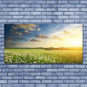 Leinwand-Bilder Wandbild Leinwandbild 140x70 Wiese Blumen Natur