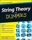 String Theory For Dummies by Daniel Robbins, Andrew Zimmerman Jones (Paperback, 2009)