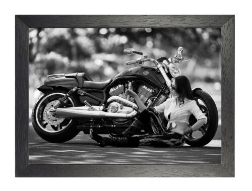 Harley Davidson 26 American Motorcycle Poster Quality Print Route 66 Bike Photo