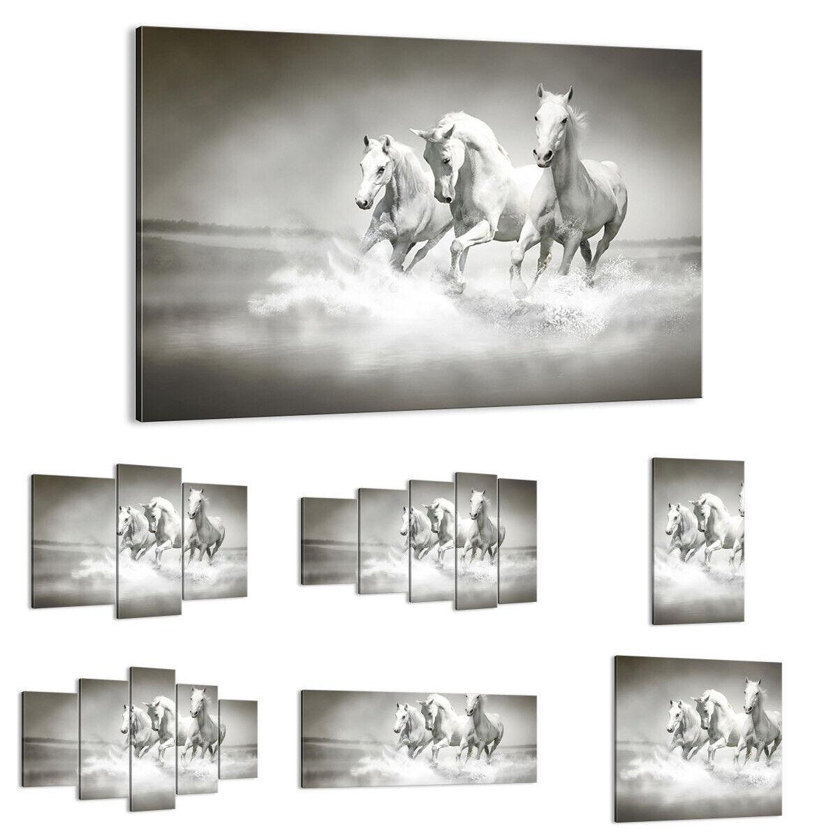 QUADRO MODERNO Stampa su tela Fattoria cavalli galoppo libertà 2389 IT