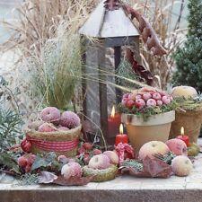 Serviettentechnik Frozen Fruits Winter Ambiente 33 x 33 Servietten 20