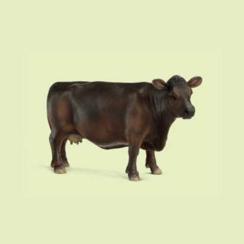 """New with FLAGS! 13767 /""""Black Angus Cow/"""" #Schleich New with Tag!"""