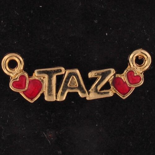 CHARM Taz Tazmanian Devil WARNER BROS LOONEY TUNES Gold Red WB STORE 5432