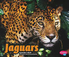 Jaguars by Jennifer L Marks (Hardback, 2010)
