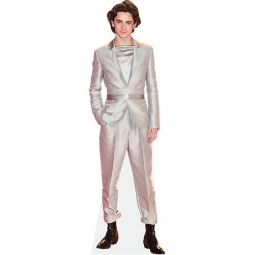 Timothee Chalamet grandezza naturale Sagoma di cartone Silver Suit