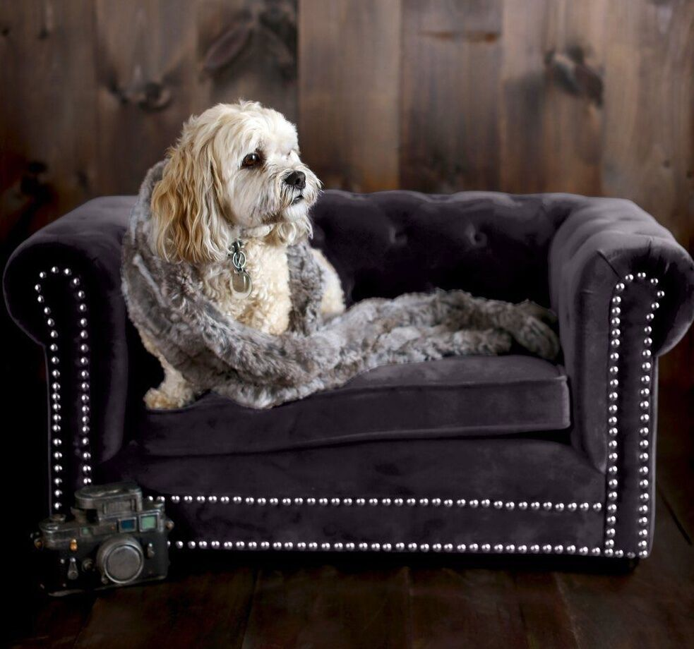 Chesterfield Dog Cat Sofa Couch Bed Velvet Tufted Plush Cozy Soft Pet Furniture