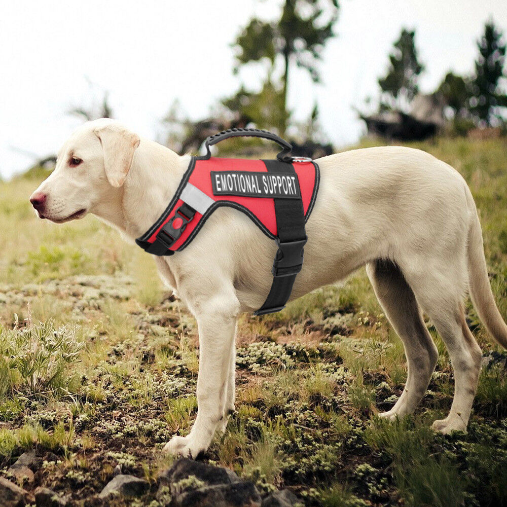 Heavy Duty Emotional Support Working Reflective Dog Vest
