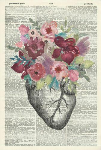 Anatomy Vintage Dictionary Page Print 511KLD ORIGINAL Floral Heart Art Print