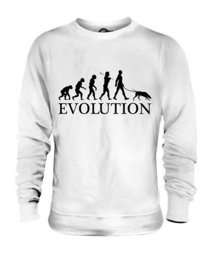 PLOTT EVOLUTION OF MAN UNISEX SWEATER  Herren Damenschuhe LADIES DOG LOVER GIFT