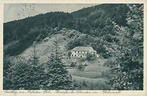 Ansichtskarte-Gasthaus-zur-Befreiten-Pfalz-Harzofen-Elmstein-1932-Nr-823