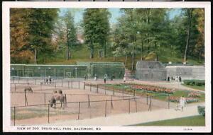 BATLIMORE-MD-Druid-Hill-Park-Zoo-Pens-amp-Cages-Camel-Vtg-Postcard-Old-Maryland-PC