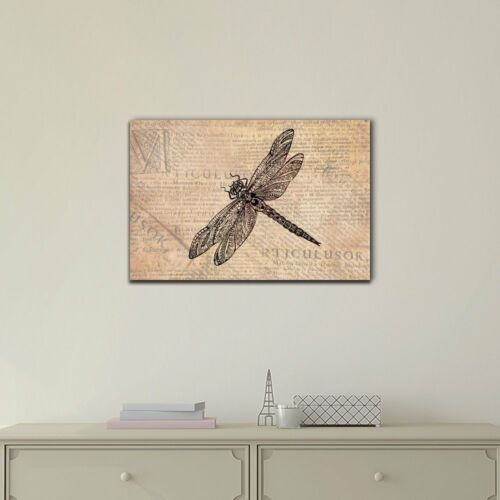 wall26 A Dragonfly on Vintage Newspaper Background Canvas Wall Art 12x18