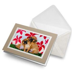 Greetings-Card-Biege-Puggle-Dog-Beagle-Pug-Puppy-15932