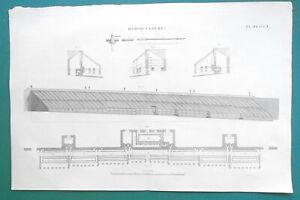 SCOTLAND-Dalmeny-Park-Greenhouses-Horticulture-Hot-Houses-1817-Antique-Print