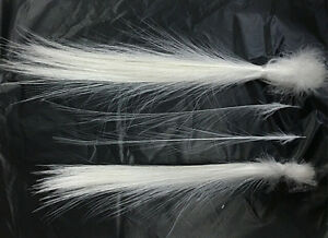 Rare 10/50/100pcs natural feather 8-14 inch white feathers Wedding decoration
