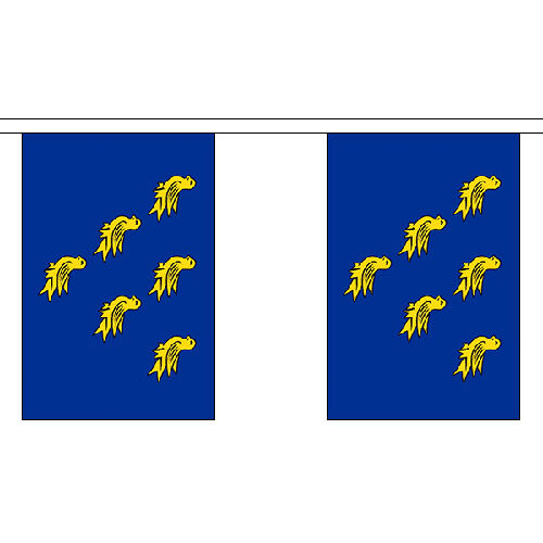 Sussex 9m de long 30 drapeaux Bunting Angleterre Anglais Comté de décoration