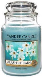 Yankee Candle Usa Exclusive Rare Splash Of Rain Wax Tart