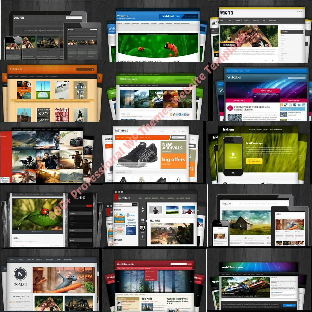 600+ Wordpress Premium Themes/Websites - DVD Disk, +3 Bonuses With Resell Rights 2