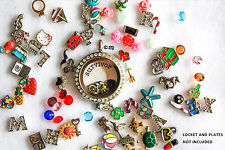 50 Mixed RANDOM Lot Charms Birthstone for Floating Living Locket Glass Necklace