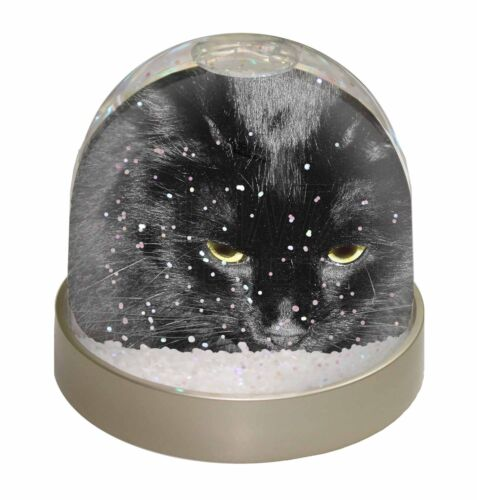 Gorgeous Black Cat Photo Snow Globe Waterball Stocking Filler Gift AC-300GL