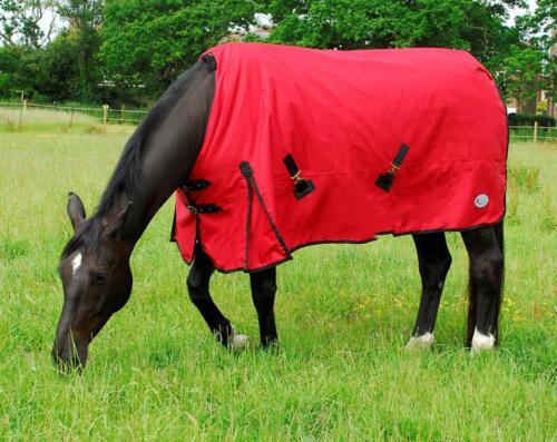 Rhinegold Konig 200 g moyens cheval participation tapis en rouge