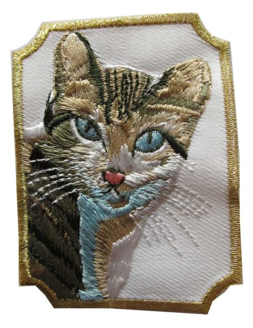 #4447C Multicolor Kokopelli Fertility Deity God Embroidery Applique Patch