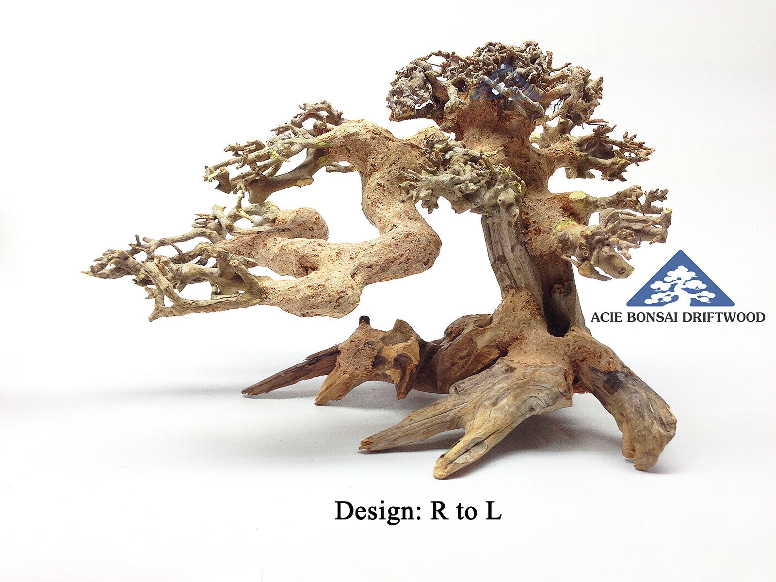 (International) Medium Bonsai Driftwood Natural Aqua Decor Make to Order Order Order - RL4 798edd