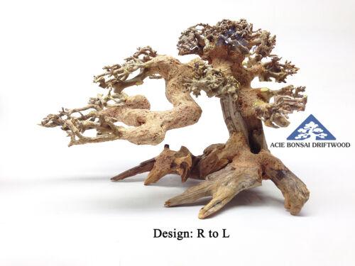 RL1 Medium Bonsai Driftwood Natural Aqua Decor Make to Order International