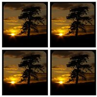 Sunset 1 /4 Thick Rubber Coaster Set Of 4