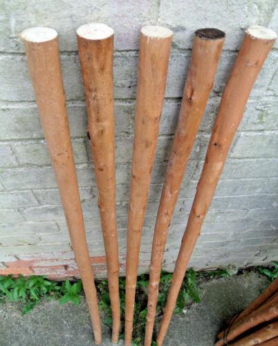 Chestnut Shafts Shanks Seasoned Peeled Blanks Stickmaking Walking Stick Making