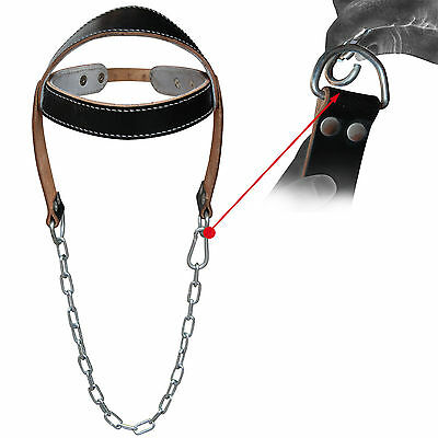 Leather Weight Lifting Head Harness Dipping Neck Strength Gym Fitness Dip