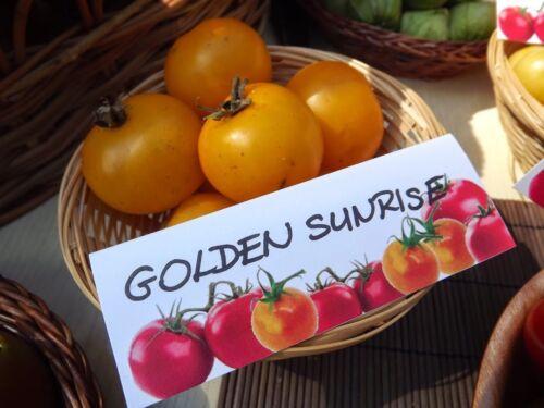 Samen Golden Sunrise Tomate 10 süße gelbe Salattomate!