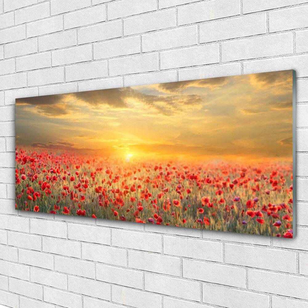 Acrylglasbilder Wandbilder aus Plexiglas® 125x50 Sonne Wiese MohnBlaumen Natur