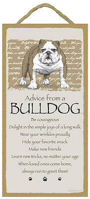 Advice From A  BULLDOG Bull Dog 10 x 5 Wood SIGN Plaque USA Made