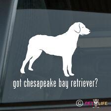 Got Chesapeake Bay Retriever Sticker Die Cut Vinyl - chessie cbr