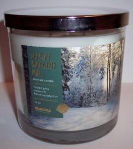 NEW! Kohls Sonoma Christmas 2020 FROSTED WOODLAND PINE 3 Wick Jar