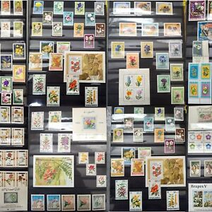 Worldwide-Flowers-Stamp-Collection-MNH-15-Full-Sets-from-15-Different-Countries
