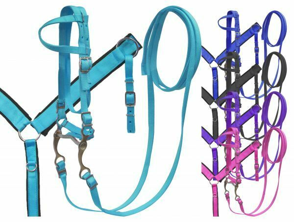 Showman PONY Double  Ply Bridle & Breast Collar Set w  Grazing Bit  Free Ship   low prices