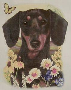DOG-BREEDS-FLOWERS-amp-BUTTERFLIES-BLACK-amp-TAN-DASHUNDS-SHIRT