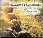"""QUINTORIGO - RARO CD FUORI CATALOGO """" IL CANNONE """""""