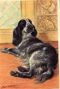 Cocker-Spaniel-MATTED-Dog-Art-Print-German-NEW-U