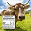 Bone-Broth-Powder-Pure-Protein-Organics-Grass-Fed-100g thumbnail 5