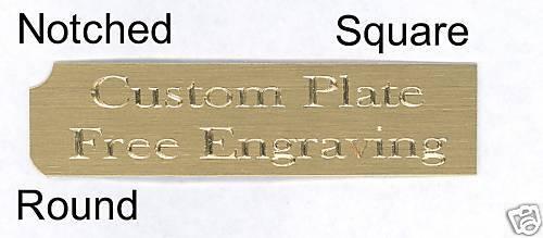 "Engraved Plate art-trophy-Taxidermy 3//4/""x 3/"" Brass FANTASY FOOTBALL"