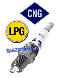 4-CANDELE-BRISK-SILVER-IMPIANTO-GAS-GPL-METANO-DR15YS-9