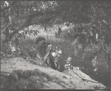 CAMERA WOMAN Lady FOUND PHOTO and NEGATIVE bw FREE SHIPPING Photographer  741-1