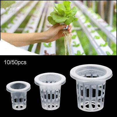 10//50pcs Nursery Sponge Planting Basket Soilless Hydroponic Seed Trays Durable